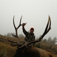 Wyoming Elk Hunting Opportunities: What's Your Ideal Hunt?