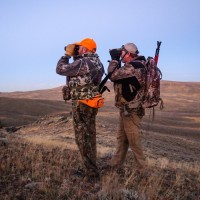 3 Rules to Follow When Glassing for Mule Deer