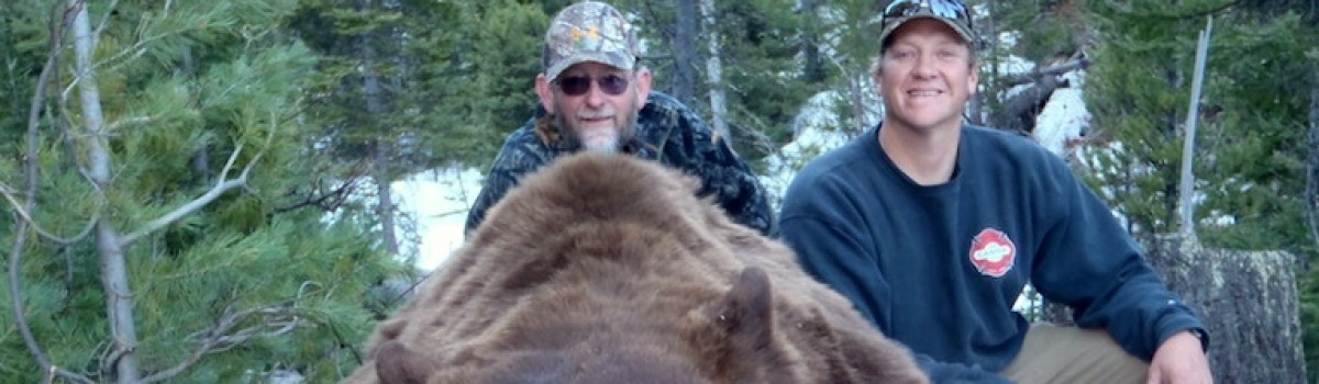 Why We Love Spring Bear Hunts