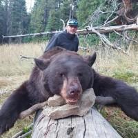 September on the Greys River: Fall Black Bear Hunts
