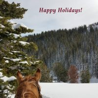 Merry Christmas from Your Friends at SNS in Wyoming
