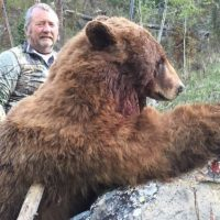 Openings for 2017 Spring Black Bear Hunts