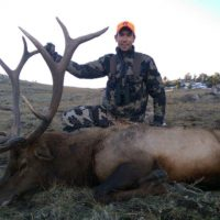 Wyoming Elk Draw Results are Now Available