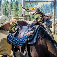 Experience the Solar Eclipse on a Horseback Adventure