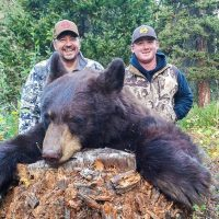 Fall Black Bear Hunting Roundup from Wyoming