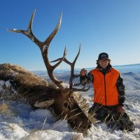 Don't Miss the 2018 Wyoming Elk Application Deadline