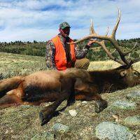 REMINDER: Elk Application Deadline is January 31st