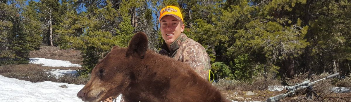 NEW Spring Black Bear Hunts Added: June 4 – June 8, 2018