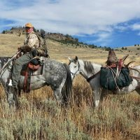 The Summer Outlook for Hunting Season