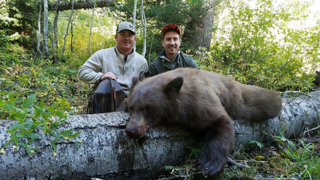 First Bear Down