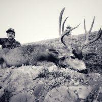 2018 Wyoming High Country Mule Deer Recap