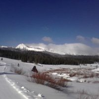 A Spring Update Out of Wyoming