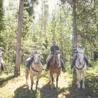 Plan Your Wyoming Summer Trail Ride with Jackson Hole Outfitters!