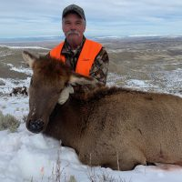 Cow Elk Hunting with SNS Outfitter & Guides