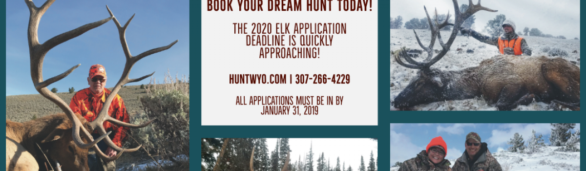 2020 Wyoming Elk Application Reminder