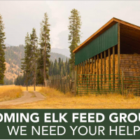 Wyoming Elk Feed Grounds: need your help