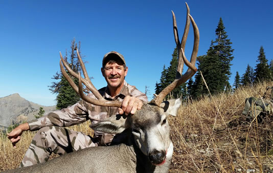 utah elk hunting guides and outfitters