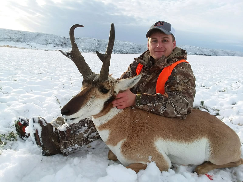 Elk Hunting Trips, Guides and Oufitters