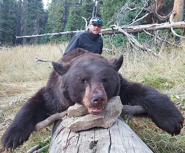 black bear hunting with sns outfitters