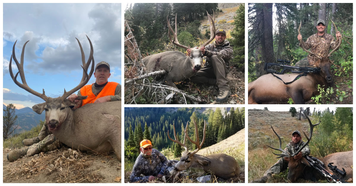 Hunt 8 SNS Mule deer & bull elk archery & rifle