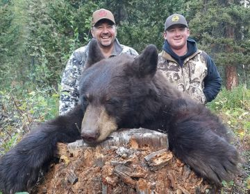 Hunt 9 Wyoming Black Bear Sns 2017 4