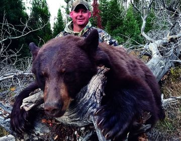 Hunt 9 Wyoming Black Bear Sns 2018 11
